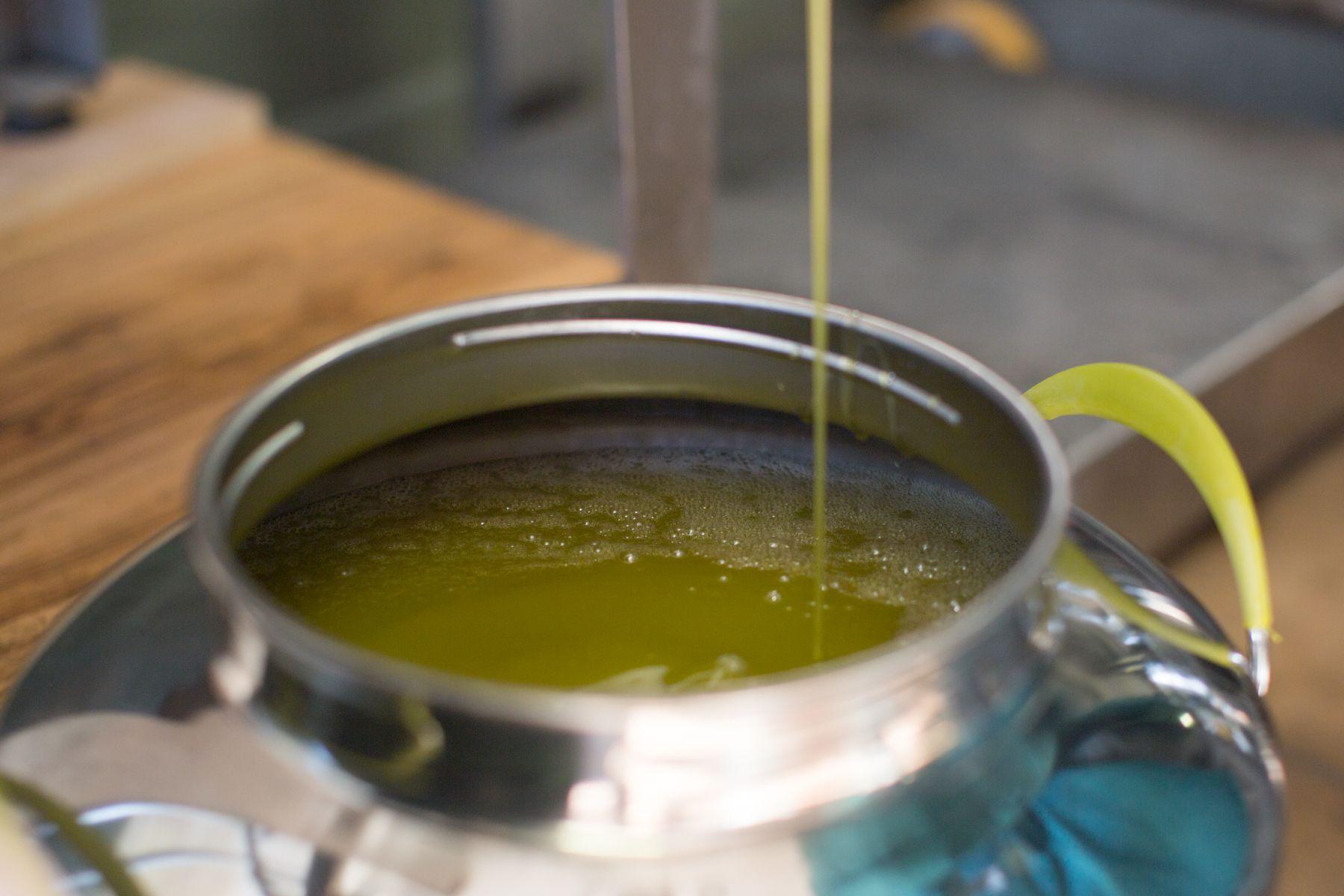 olio mosto o filtrato 1